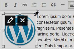 Vizuelni editor